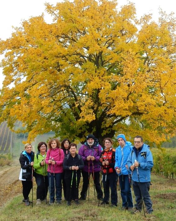 Autunno a ritmo di nordic Walking sulle coste di Talignano